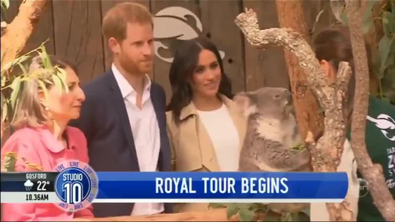 HarryandMeghan get up close with an adorable koala at Sydneys Taronga Zoo. RoyalTourAustralia Studio10.mp4