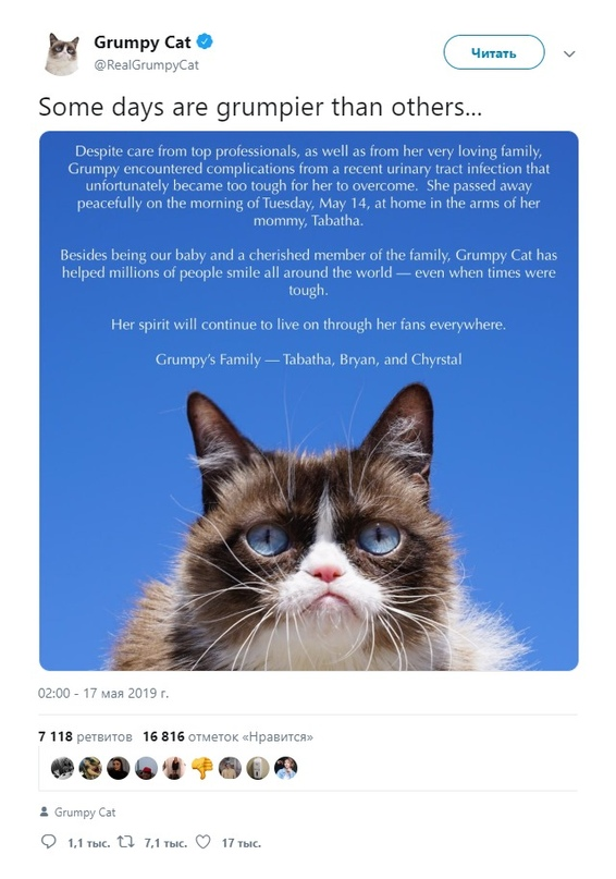 17 мая в официальном твиттер-аккаунте кошки-мема Grumpy Cat объявили, что 14 мая животное умерло в возрасте семи лет на руках хозяйки Табаты Бундесен. «Grumpy Cat помогла миллионам людей по всему миру улыбаться — даже в сложные времена. Её дух продолжит жить вместе с фанатами по всему миру», — говорится в сообщении.