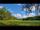 Леса и поля. Музыка Сергея Чекалина. Forests and fields. Music Sergei Chekalin.