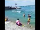 Представление в Геленджике.  Дельфины в бухте развлекают народ