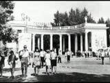 Владимир Нечаев - В городском саду