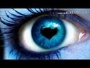 Frequenz Синие розы Ты смеялась надо мной Я просила на сведан