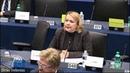 Aktuelles aus dem EU-Parlament