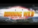 Звездное выживание с Беаром Гриллсом 4 сезон 4 серия Скотт Иствуд Running Wild Bear Grylls 2018