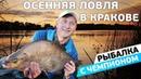 Фидерная ловля осеннего леща на реке Висла Рыбалка с чемпионом