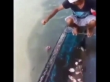 Я бы здесь купаться не стал!