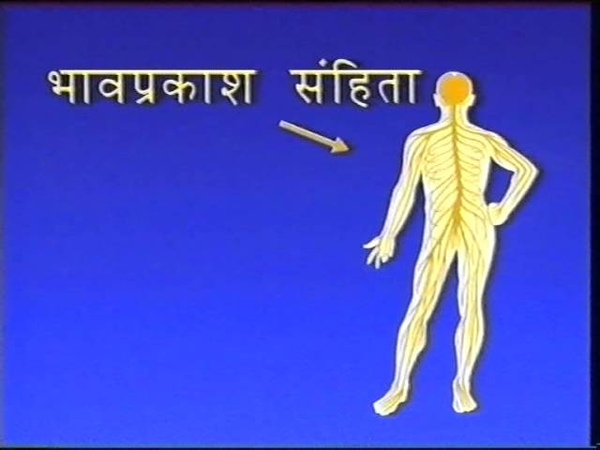 40 Vedic aspects Video