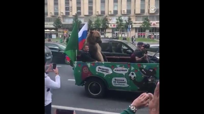 Балалайки и шапки-ушанки нет, зато есть медведь в центре Москвы, празднует вместе со всеми победу России