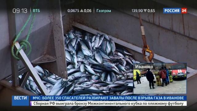 Новости на Россия 24 • Курильские рыболовы получили новый современный траулер