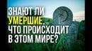 Знают ли умершие о том, что происходит в этом мире?