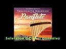 PANFLUTE GRANDES EXITOS Seleccion de Cecil Gonzalez