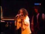 Скончался легендарный рок-музыкант Ронни Джеймс Дио