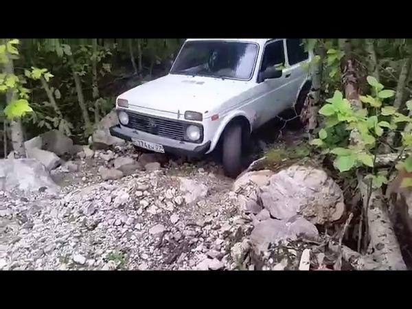 Клип про Ниву.