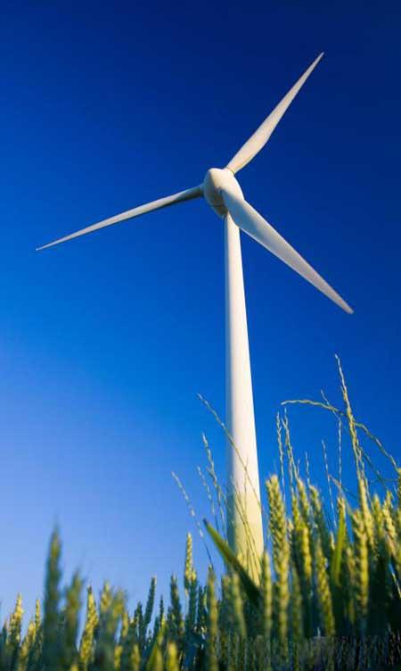 Получение энергии из устойчивых источников, таких как энергия ветра, может помочь сделать дом более экологичным