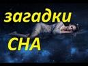 Сон и его загадки Павел Карелин