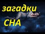 Сон и его загадки...Павел Карелин