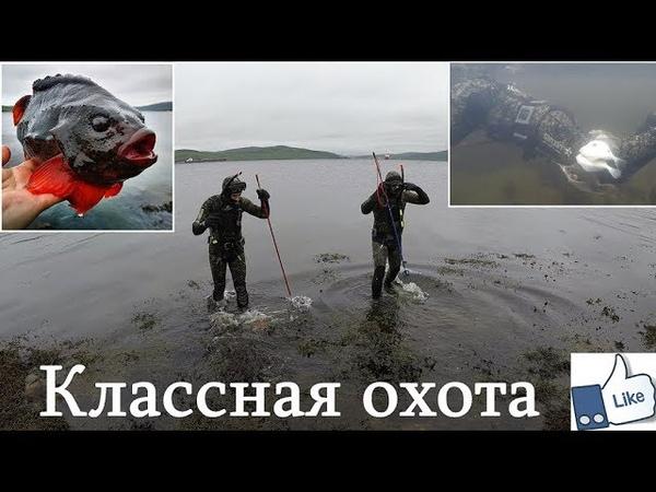 В ЗАЛИВ С ОЛЕГОМ ВИКТОРОВИЧЕМ / IN THE GULF OF OLEG VIKTOROVICH