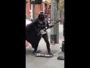 Музыкальная темной стороны силы VIDEO ВАРЕНЬЕ
