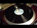 Steely Dan Haitian Divorce 1976 vinyl