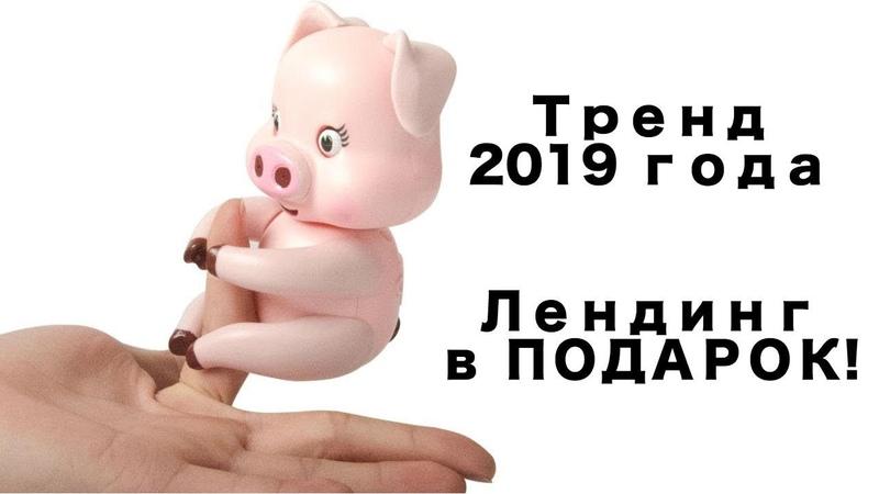 Трендовые товары 2018 для одностраничников. Спалил крутой товар