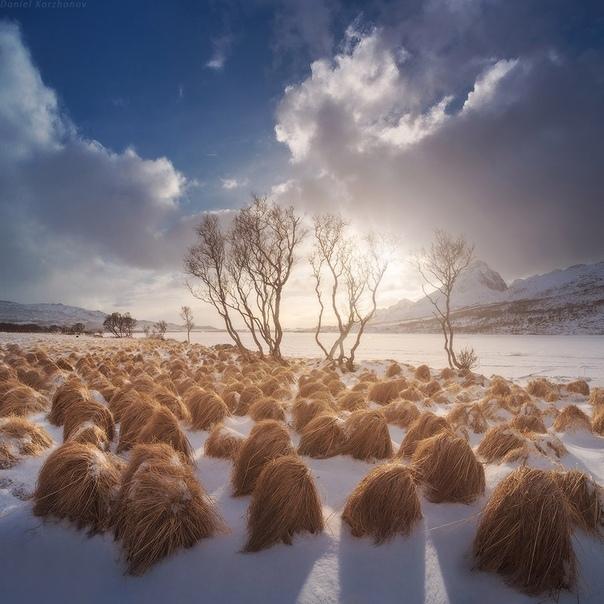 Что такое снег Снег - форма атмосферных осадков. Снежинка образуется, когда микроскопические капли воды в облаках притягиваются к пылевым частицам и замерзают. Появляющиеся при этом кристаллы