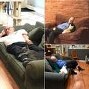 Мужчина-волонтер регулярно приходит в местный приют для кошек и дарит свое внимание каждом…