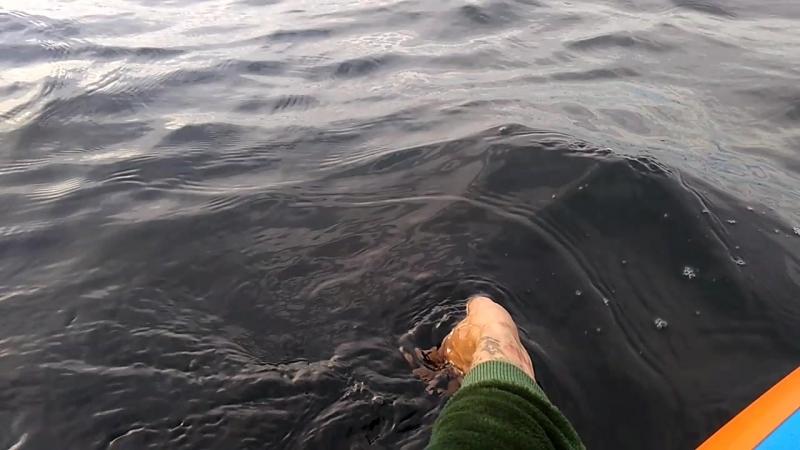 Отдых и чил на сапе в море