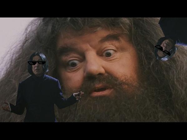 Гарри Поттер и Комната с Овощами Harry Potter CRACK 2