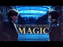 Newt tina   every little thing she does is magic 〔SPOILERS - fantastic beasts cog〕