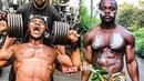 Африканский МЫШЕЧНЫЙ МЕДВЕДЬ Armz Korleone Бодибилдинг мотивация
