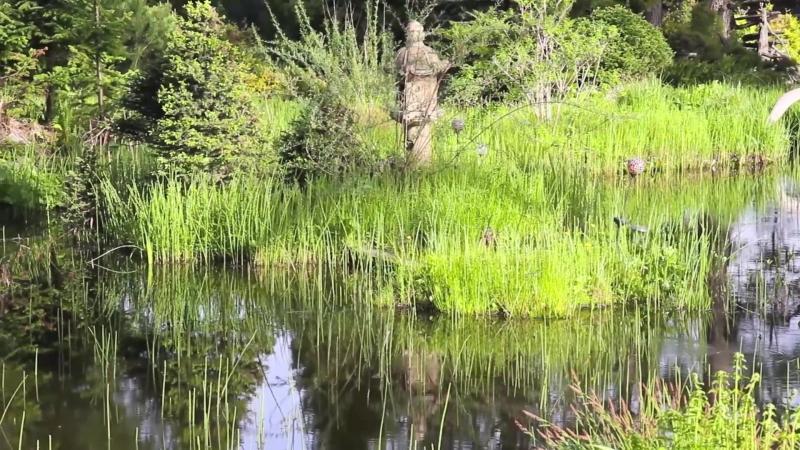 Центральный сибирский ботанический сад. Новосибирск. Экспозиция Бонсай-парк