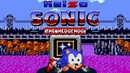 Kaizo Sonic The Hedgehog - The RAGE game - Walkthrough