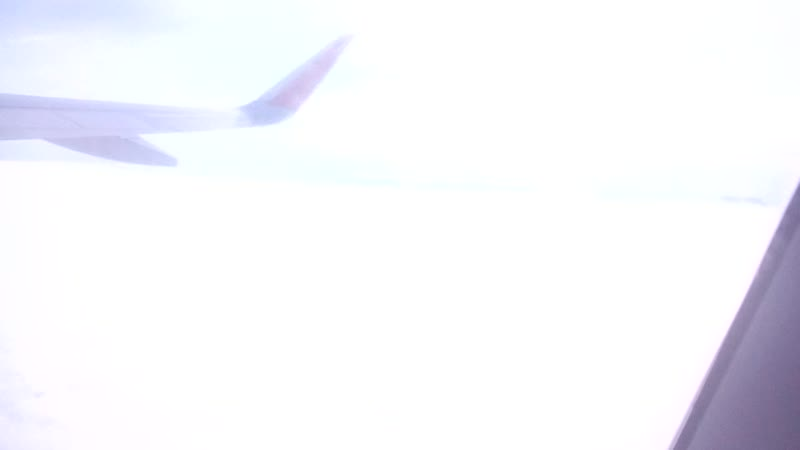 پرواز ما زیبا سواستوپول