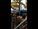 Аквапарк Майами