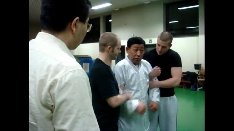 Baji Xiao Jia applications part 2. Мастер У Ляньчжи. Семинар в Бельгии.