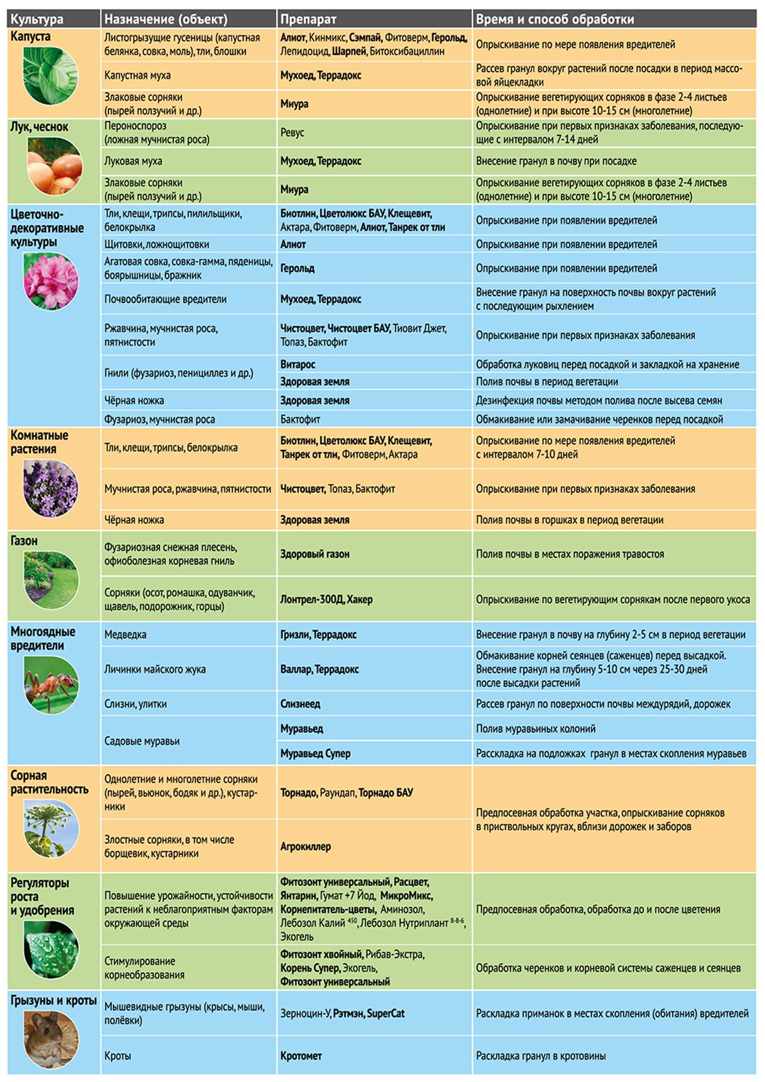 Рекомендации по защите садовых и огородных культур магазинными препаратами