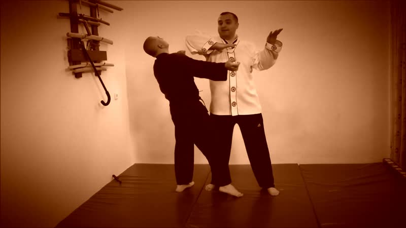 Rebel Hapkido Series 합기도 By Vidadi Hajiyev (61)