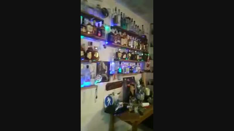 Мечта любого мужика Гараж с алкогольной коллекцией