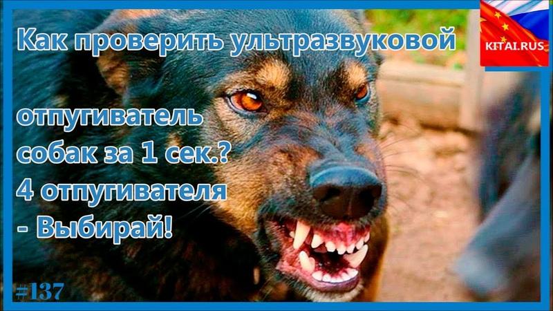 Как проверить отпугиватель собак за 1 сек.? Ультразвуковой отпугиватель собак 4 вида - выбирай! 137