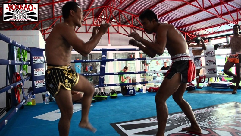 Muay Thai Sparring No Shin Guards Saenchai vs Singdam - YOKKAO Training Center Bangkok