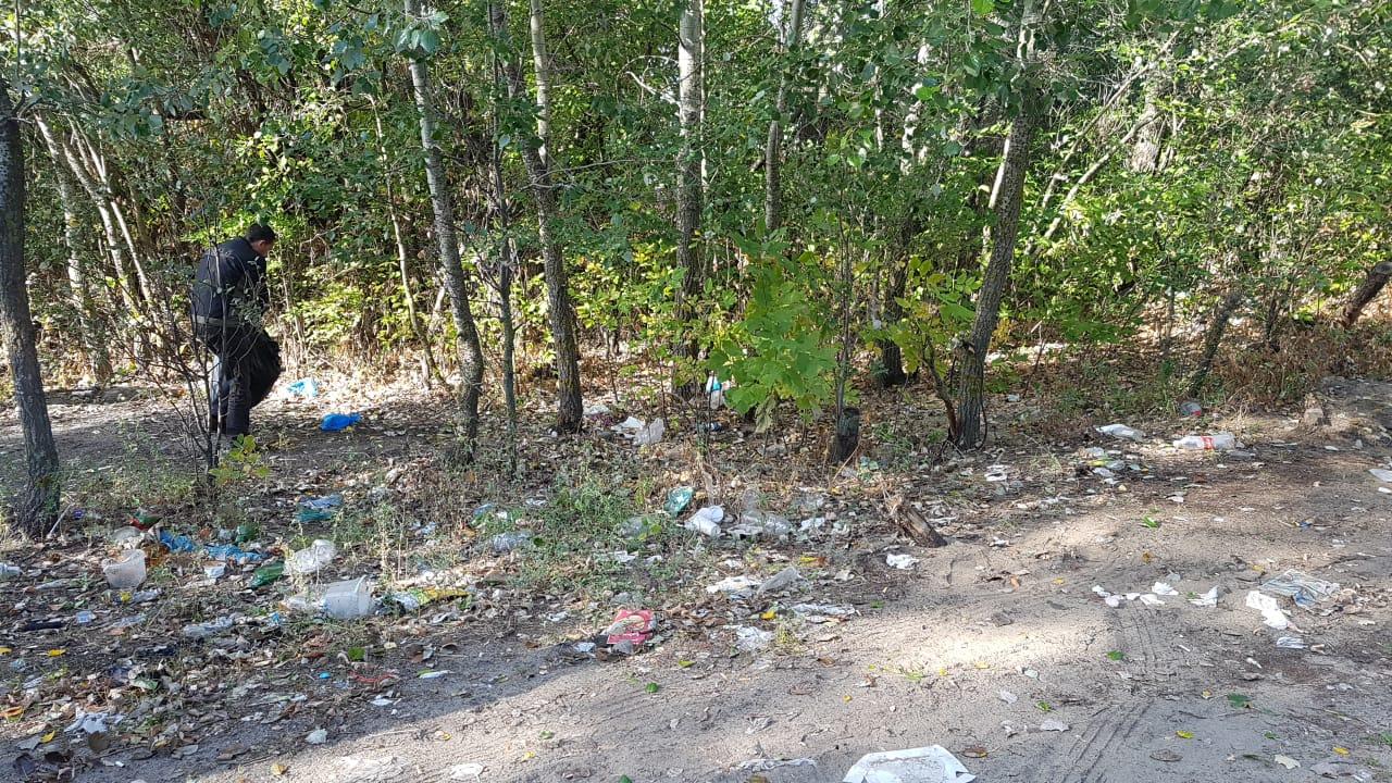Более 1000 человек участвуют в массовой уборке города — Изображение 4