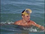 Флиппер ENG SUB - 1 сезон 29 серия Flipper S01 E29 - The Call Of The Dolphin (1964-1965)