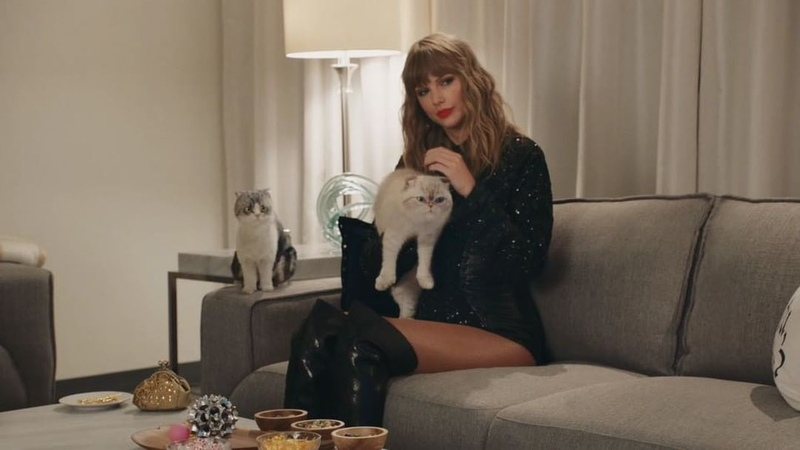 """Taylor Swift on Instagram """"When you forget to DVR Meredith and Olivia's favorite shows, Claw Order SVU and Greys Acatomy."""""""
