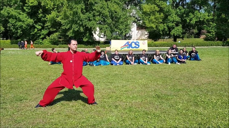 Master G. Paterniti Lupo - Xinjia Yi Lu Er Lu Demonstration - Vicenza (Italy), April 29th, 2017