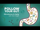 Follow Your Gut: Microbiomes and Aging with Rob Knight - Research on Aging