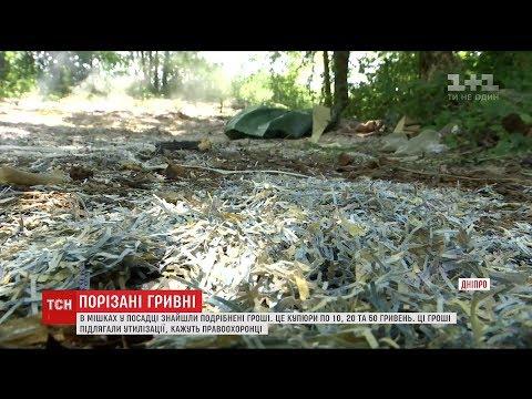 Порізані гривні в мішках знайшли у полях неподалік Дніпра