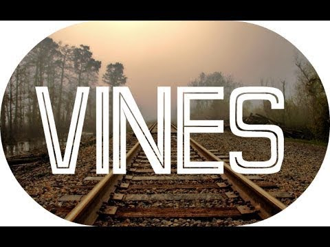 Vines Дяди Бори