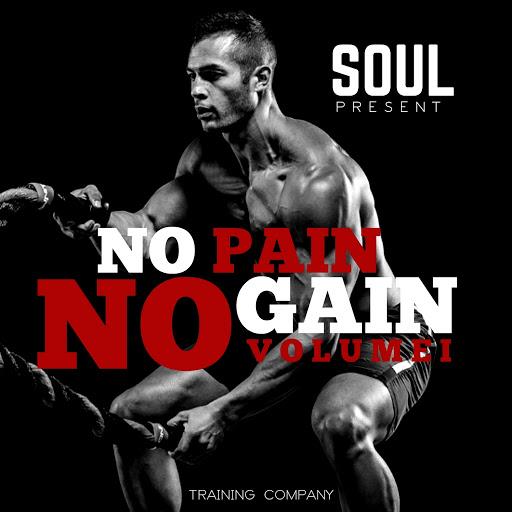 Soul альбом No Pain No Gain, Vol. 1