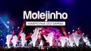 Harmonia do Samba - Molejinho | DVD Ao Vivo Em Brasília