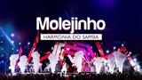 Harmonia do Samba - Molejinho DVD Ao Vivo Em Bras